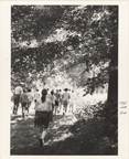 Image of General field trip off to North American Tract.  MBG Bull. 49(6):[100] (June 1961).