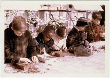 Image of Education.  Children's Nature Program.  Transplanting seedlings