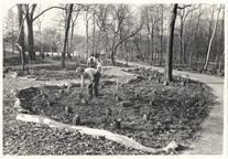 Image of English Woodland Garden.  Pruett Memorial Planting.  John Elsley in foreground.  May 1975 Bulletin.