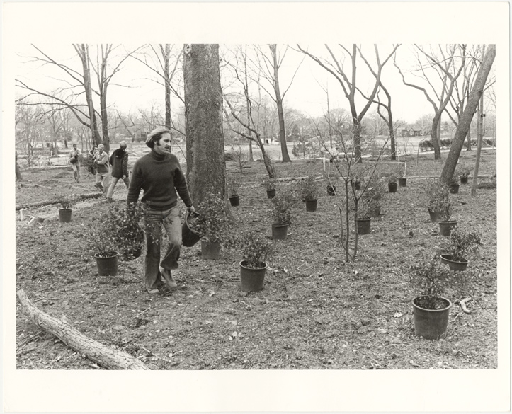 Image of Planting in English Woodland Garden. Foreground, John E. Elsley, Curator of Hardy Plants & designer of English Woodland Garden.  March 21, 1975.  Same as PHO 2006-0120.