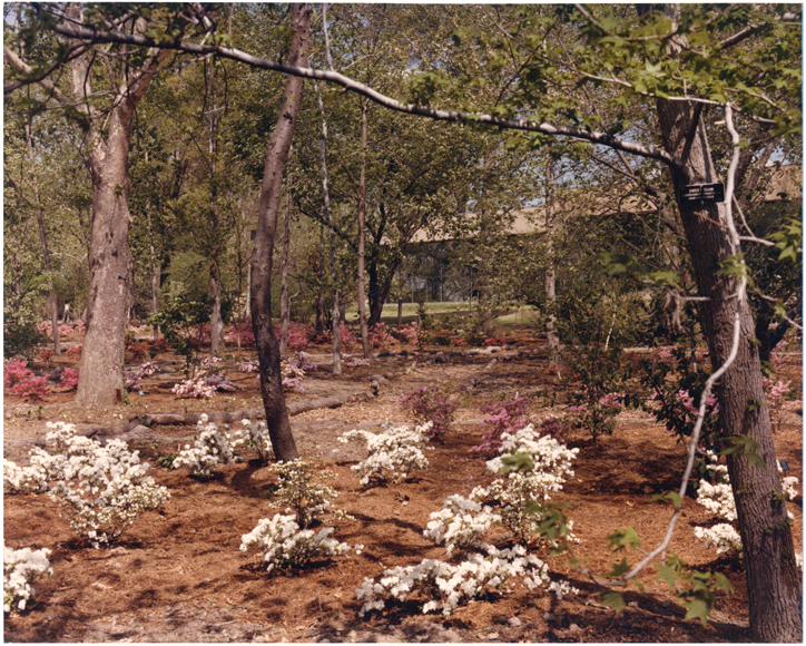 Image of English Woodland Garden.  Dedicated May 4, 1976.  Same as PHO 2006-0096, PHO 2006-0103
