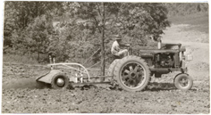 Image of Equipment.  Seaman tiller working in boxwood garden.   From