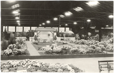 Image of Rhododendron Garden.  Greater St. Louis Flower & Garden Show.  Arena, April 1935 (March 30-April 7).  Mounted with PHO 2006-0414.