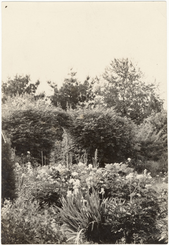 Image of Von Sahrenk Garden in Florissant.  MBG Bull. Nol. 17, No. 7, 1929, pg. 113.