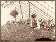 Image of John H. Tull in Old Vegetable House about 1896-98.