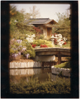 Image of Japanese Garden.  From Jack Jennings negative, 1980.