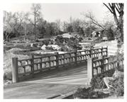 Image of Japanese Garden.  Bridge.