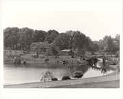 Image of Japanese Garden.  View of Teahouse Island and Drum Bridge.