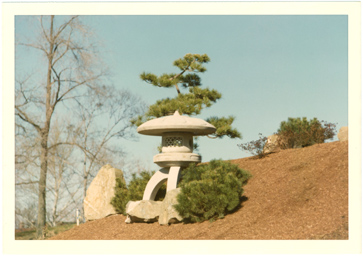 Image of Suwa Lantern in place in Japanese Garden.  Negative available at PHO 2006-1737 #2A.