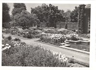 Image of A corner of the Linnean Garden of the Missouri Botanical Garden