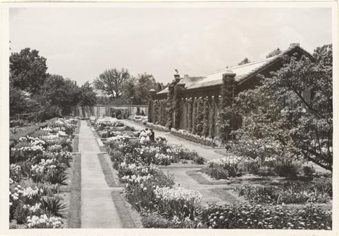 Image of Linnean Garden looking west.