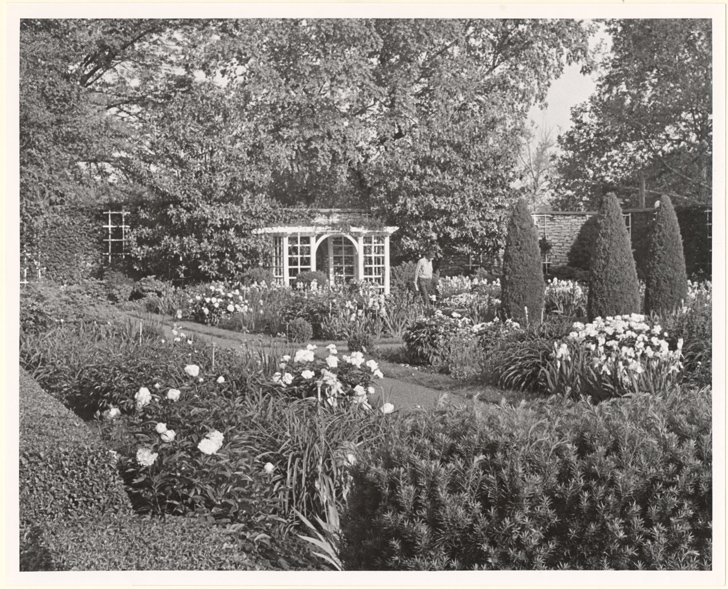 Image of Gazebo with iris and peonies in bloom.