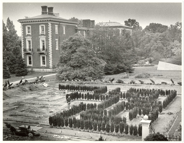 Image of Maze being laid out and planted.  Administration Building in background.  Gift of Dr. Raven.