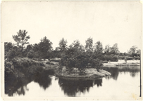 Image of North American Tract Lake.  George Pring collection #10.  Original plantin gof North American Tract and Lake.