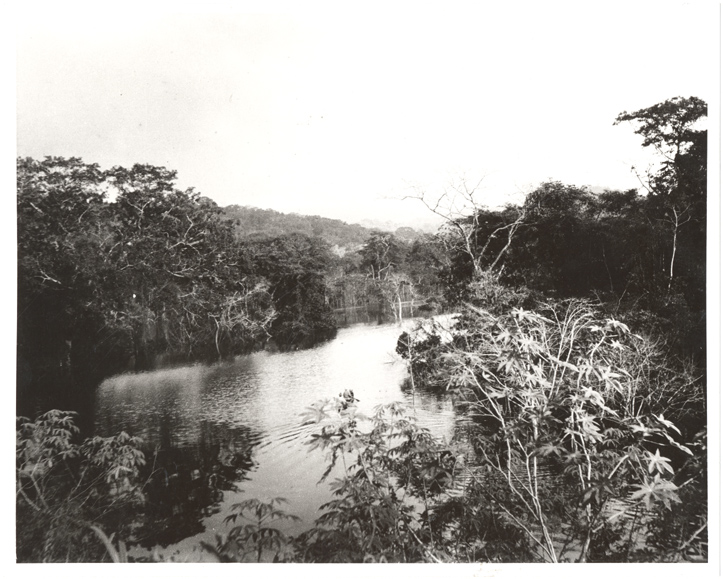 Image of Madden Lake/Dam, Panama