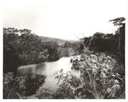 Image of Madden Lake/Dam, Panama