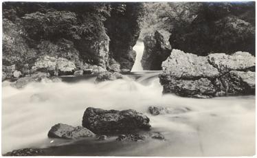 Image of Native home of Sobralia powellii.  MBG Bull. 30(2):47 1947.