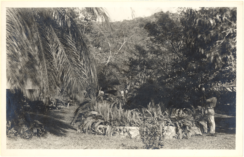 Image of Tropical Station.  Balboa, Panama.  MBG Bulletin 19(3):45-51. 1931.