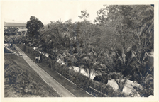 Image of Tropical Station.  Balboa, Panama.  MBG Bull. 19(3):45 Mar. 1931