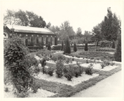 Image of Linnean Rose Garden with Linnean House.
