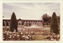 Image of Linnean Rose Garden with Linnean House.  Mounted with PHO 2007-0495 and PHO 2007-0487..