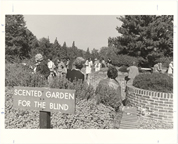 Image of Scented Garden for the Blind.  View of sign with visitors.