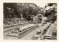 Image of Bulb Show, 1931.  Mounted with PHO 2007-0966.