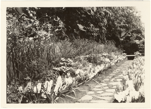 Image of Bulb Show, 1931.  Mounted with PHO 2007-0965.