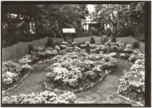 Image of Azalea Show.  Floral Display House.  Paul Kohl, Designer.  Negative available at PHO 1983-0135.