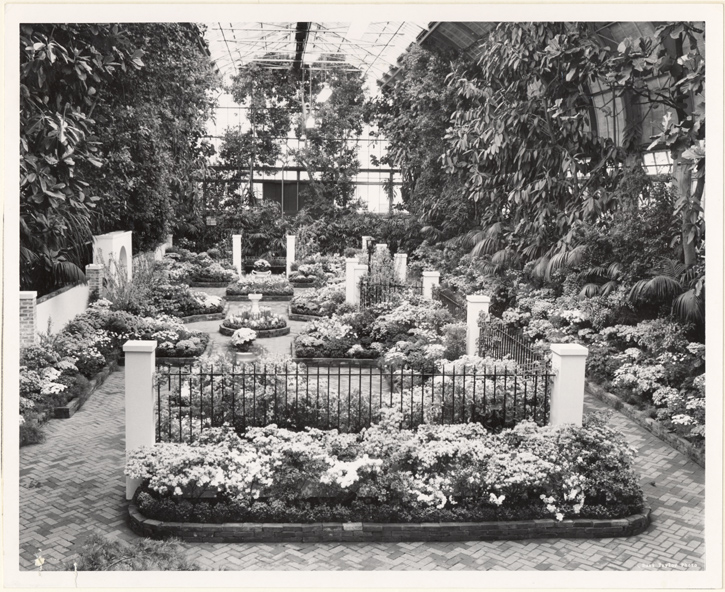 Image of Spring Flower Show, 1965.