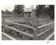 Image of Demonstration vegetable garden.  Received from Eliszbeth Cornelison 1/29/1990
