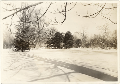 Image of Winter scenes in the Garden.  Mounted with PHO 2007-1665.