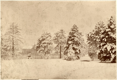 Image of Winter scene.