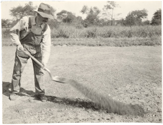 Image of Garden staff planting bent grass.  Bulletin Vol. 16.  Mounted with PHO 2007-1766, PHO 2007-1767, and PHO 2007-1769.