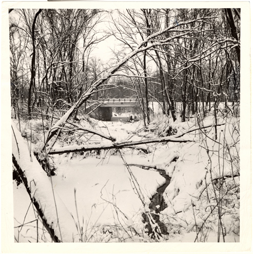 Image of Winter view up Brush Creek at the Arboretum.  Mounted with PHO 2007-1911.