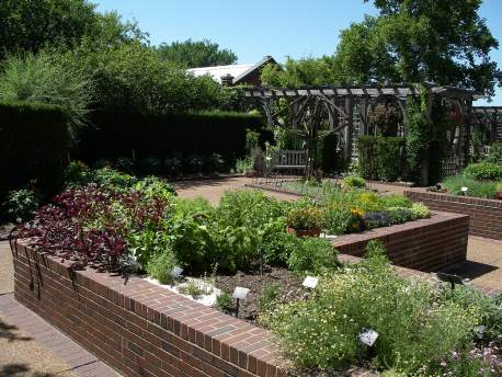 Image of Scented Garden