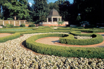 Image of Blanke Boxwood Garden view.