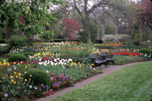 Image of Samuels Bulb Garden view.