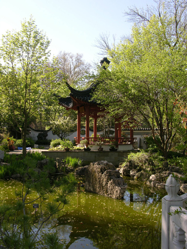 Image of View inside Chinese Garden.