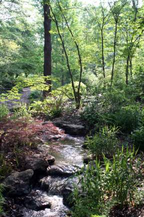Image of View of English Woodland Garden stream.