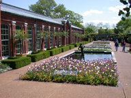 Image of View of Swift Family Garden, Linnean House to the left.