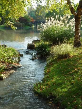 Image of Japanese Garden stream.