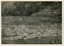 Image of Image from 1923 Columbian expedition led by George Pring.