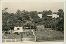 Image of Backyard garden displays at MBG showing before and after beautification work. Main gate in background.