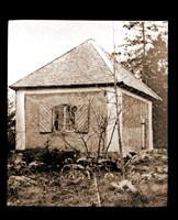 Image of Herbarium of Linnaeus at Hammarby.