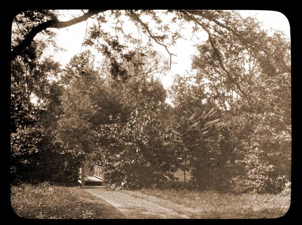 Image of Arboretum view showing small bridge in 1898.   On (original) jacket 'Slide 569'.