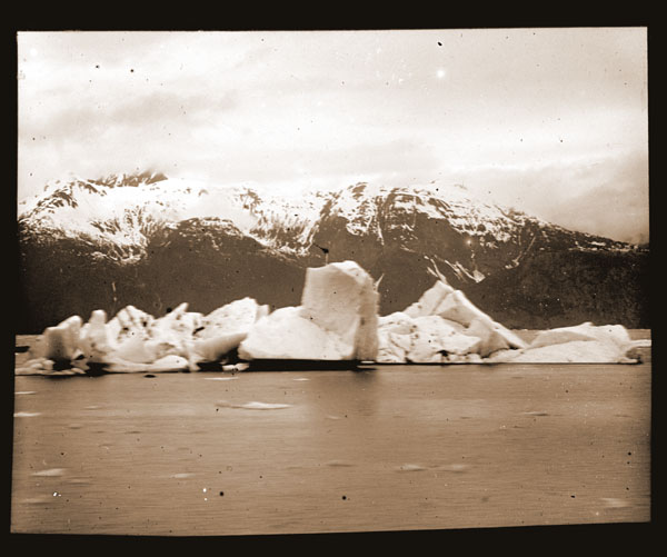 Image of Icebergs from Muir Glacier.  Harriman Alaska Expedition, 1899.