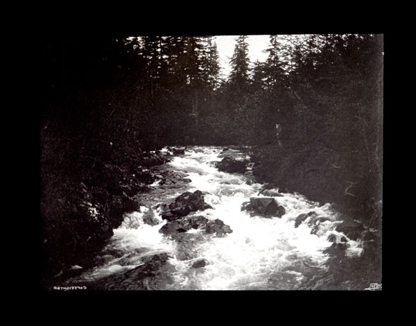 Image of Indian River.  Sitka.  Harriman Alaska Expedition, 1899.