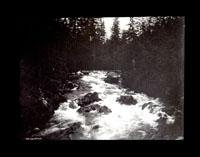 Image of Indian River.  Sitka.  Harriman Alaska Expedition, 1899.