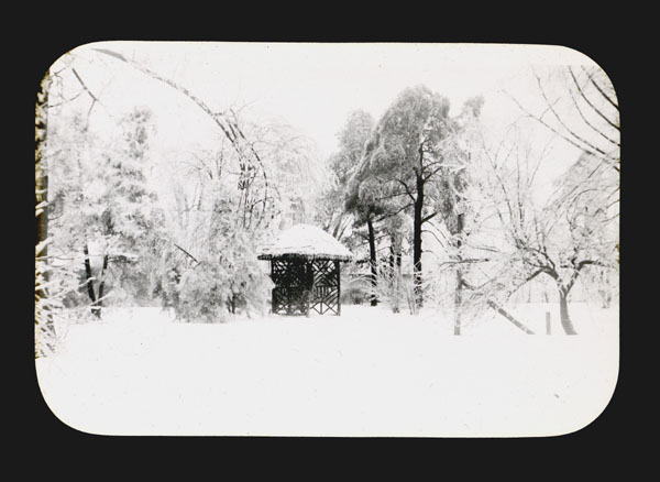 Image of The Great Sleet Storm of February 1900.  PRINT AVAILABLE -- SEE PHO 1980-0607.